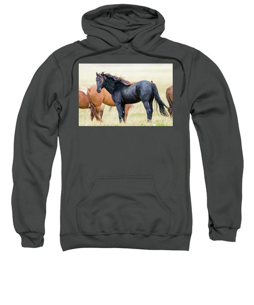 The Master Sweatshirt
