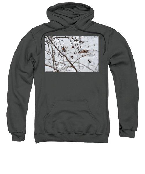 The Maternal Instinct Of The American Woodcock Sweatshirt