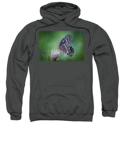 The Mattamuskeet Butterfly Sweatshirt