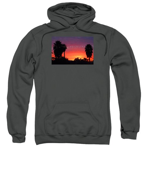 The Moody Views Sweatshirt