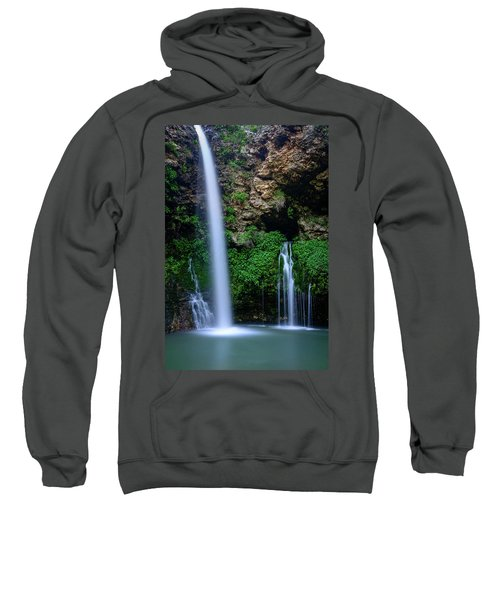 The Natural World Sweatshirt