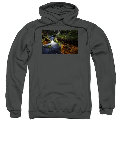 the Oder in the Harz National Park Sweatshirt