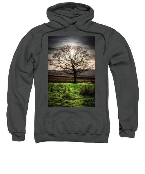 The One Tree Sweatshirt
