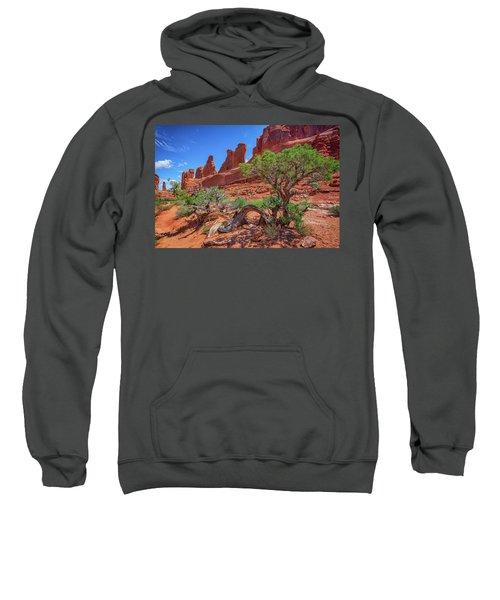 The Park Avenue Trail Sweatshirt