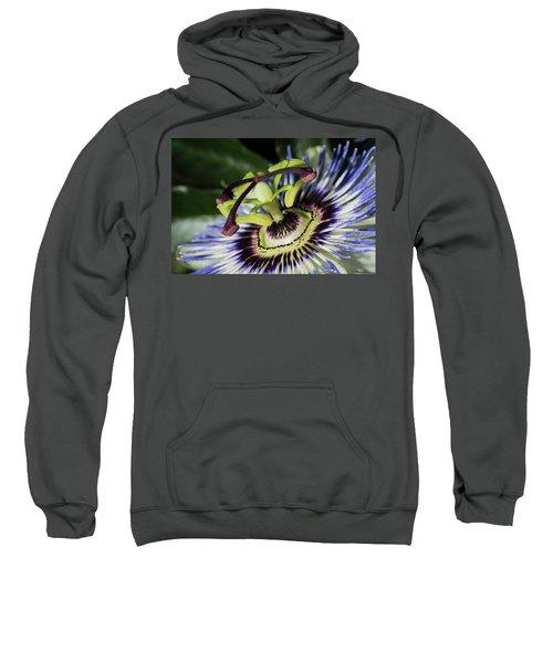 The Passion Sweatshirt