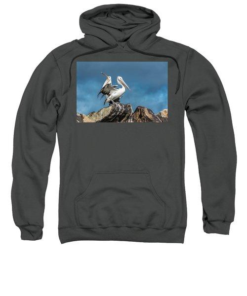 The Pelicans Sweatshirt
