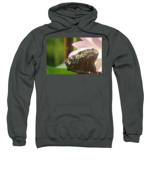 The Pod Sweatshirt