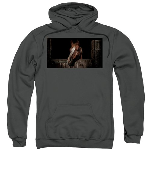 The Poser Sweatshirt