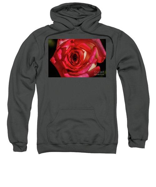 The Red Rose Sweatshirt