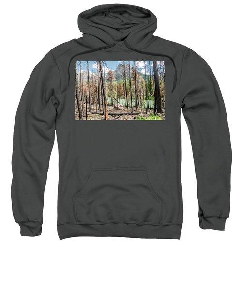The Revealed View Sweatshirt