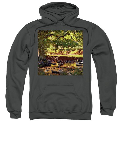 The River Lin , Bradgate Park Sweatshirt