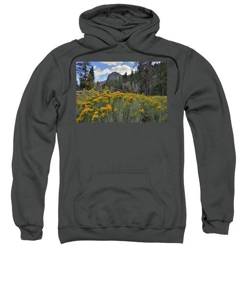 The Road To Mt. Charleston Natural Area Sweatshirt