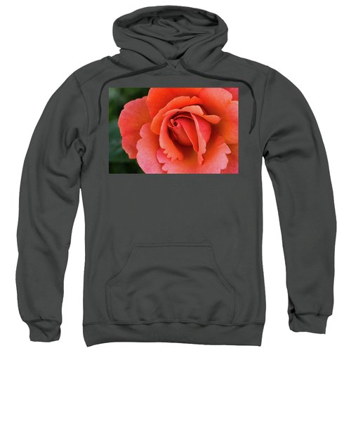 The Rose Sweatshirt