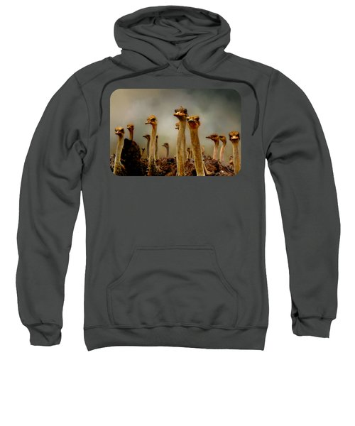 The Savannah Gang Sweatshirt