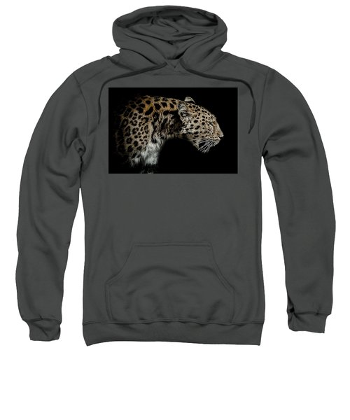 The Seeker Sweatshirt