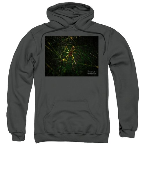 The Spider Sweatshirt