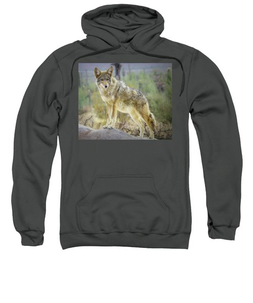 The Stance Sweatshirt