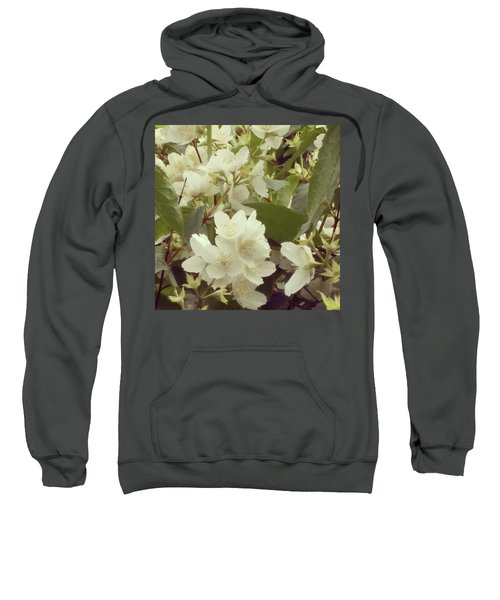 The Summer Smells Like A Mock Orange Sweatshirt