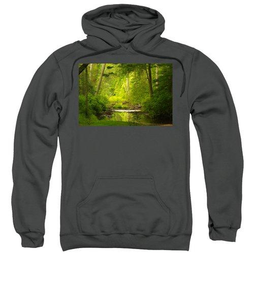 The Swamp Sweatshirt