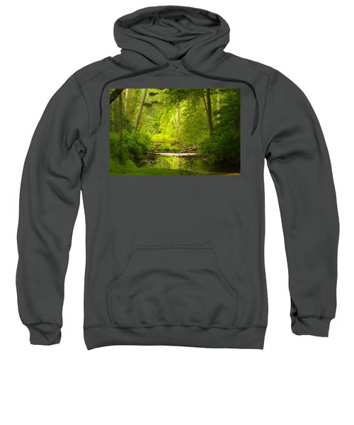 The Swamp Sweatshirt