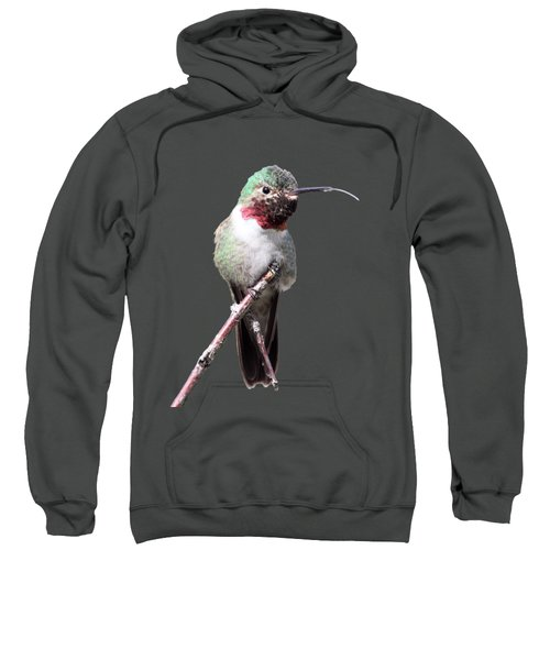 The Taste Of Air Sweatshirt