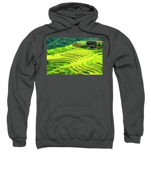 The Terraced Fields Scenery In Autumn Sweatshirt