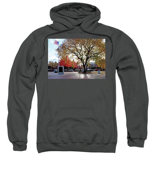 The Washington Elm Sweatshirt
