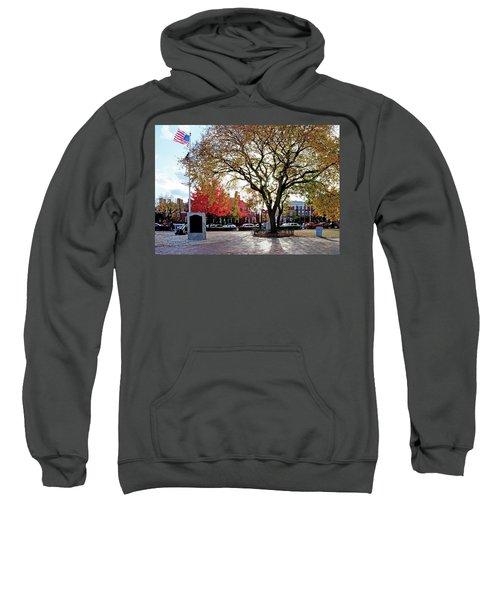 The Washington Elm Sweatshirt
