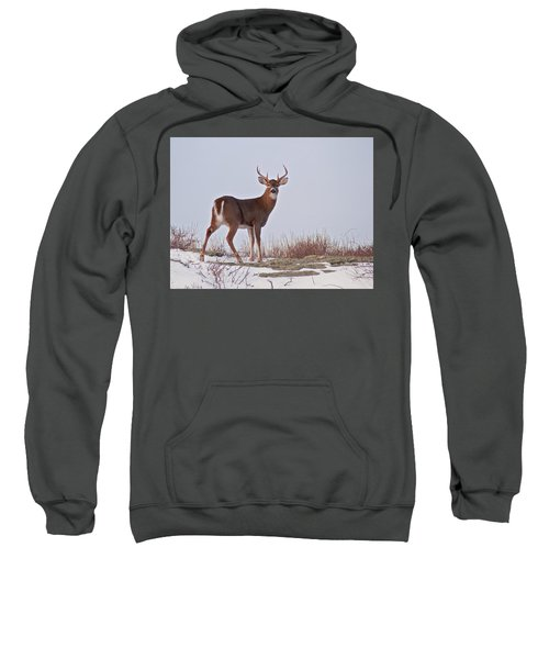 The Watchful Deer Sweatshirt
