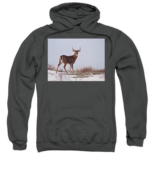 The Watchful Deer Sweatshirt