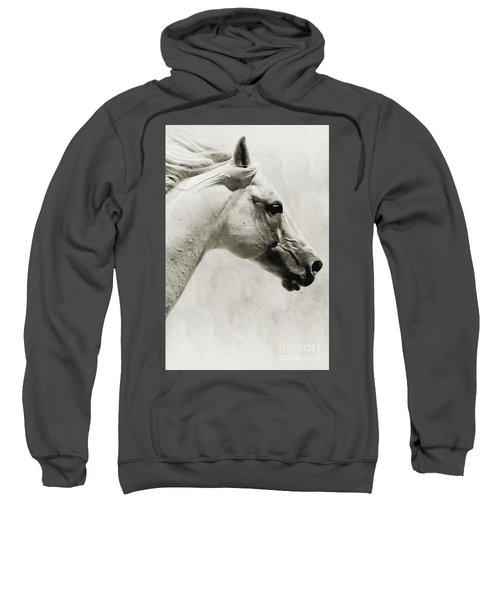 The White Horse IIi - Art Print Sweatshirt