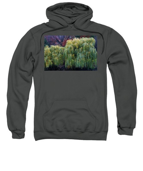 The Willows Of Central Park Sweatshirt