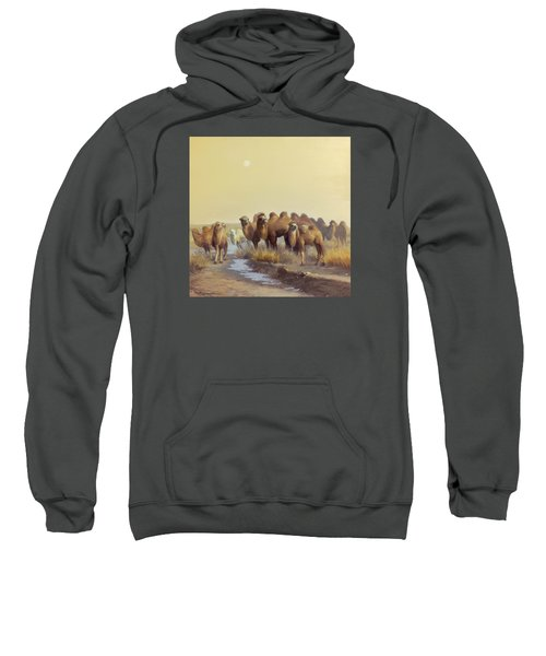 The Winter Of Desert Sweatshirt