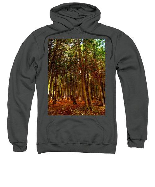 The Woods Sweatshirt