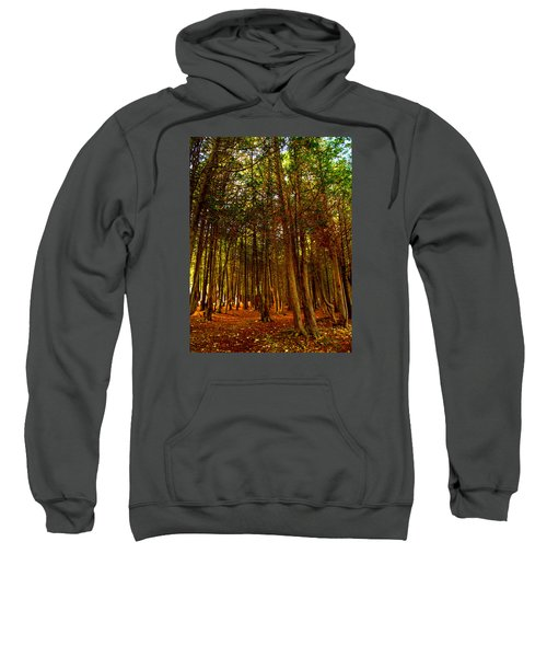 The Woods Sweatshirt