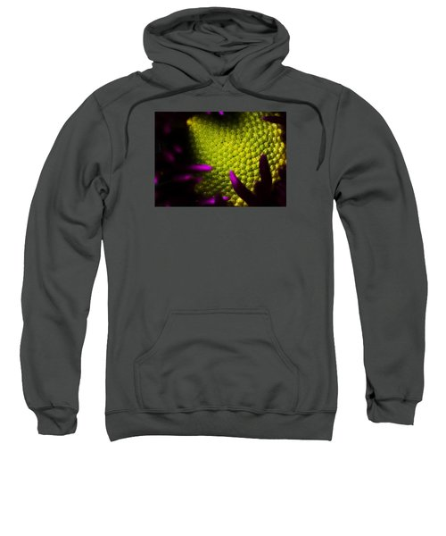 The World Within Sweatshirt