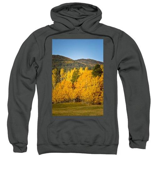 Them Thar Hills Sweatshirt