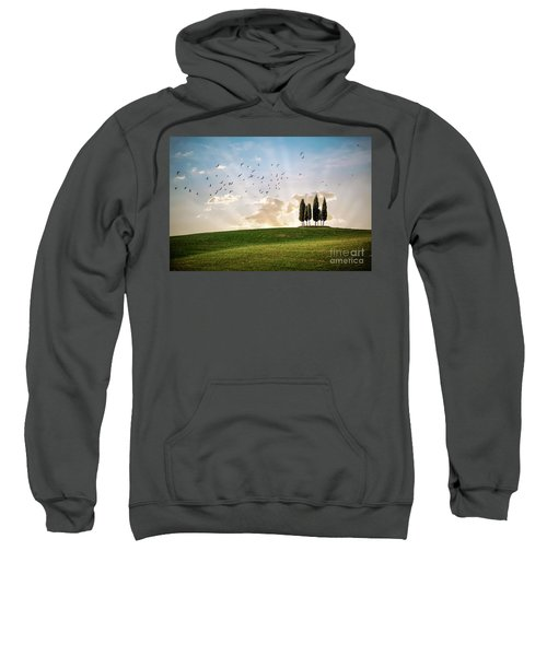This Majestic Land Sweatshirt