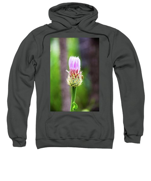 Thistle In The Canyon Sweatshirt