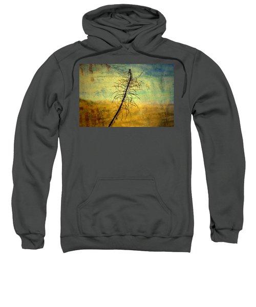 Thoughts So Often Sweatshirt