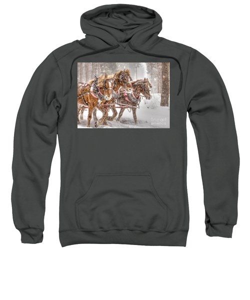 Three Horses - Color Sweatshirt