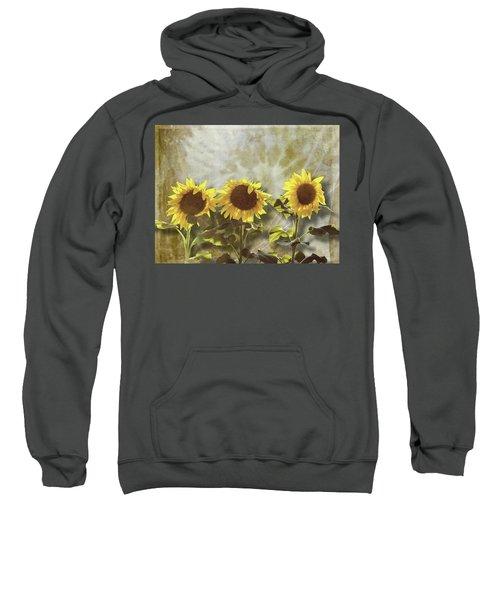 Three In The Sun Sweatshirt