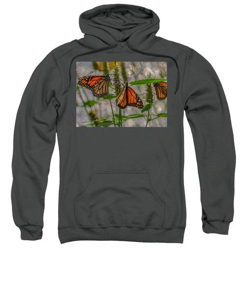 Three Monarch Butterfly Sweatshirt