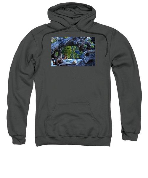 Through The Looking Glass Sweatshirt