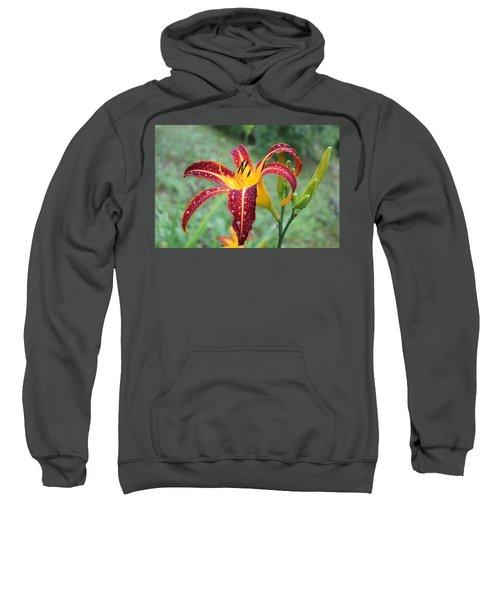 Tigerlily After A Summer Rain Sweatshirt