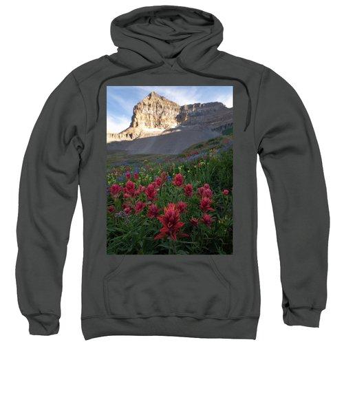 Timpanogos Paintbrush Sweatshirt