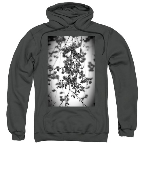 Tiny Buds And Blooms Sweatshirt