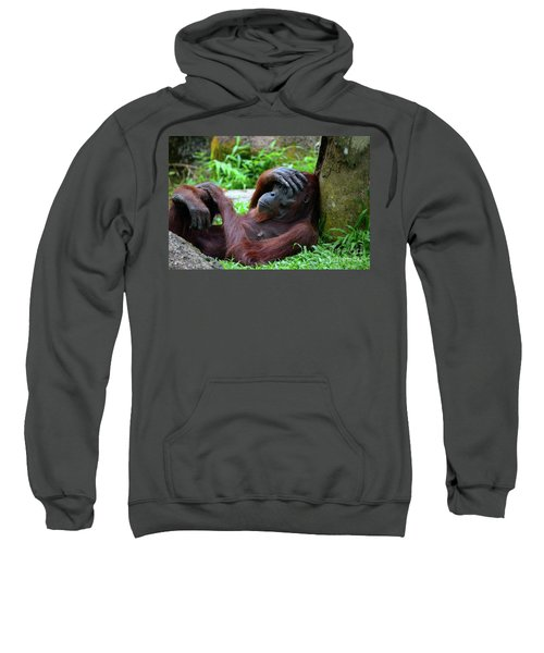 Tired Female Orangutan Ape Rests Against Tree With Hand On Her Head Sweatshirt