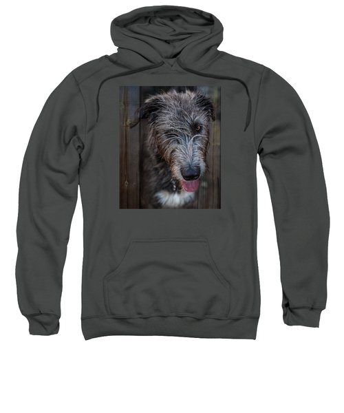 Toby, The Irish Wolfhound Pup Sweatshirt