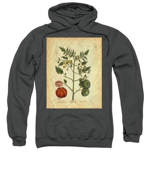 Tomato Plant Vintage Botanical Sweatshirt